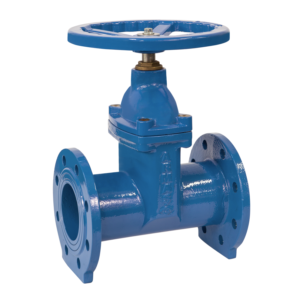 Resilient Seated Gate Valve-F5
