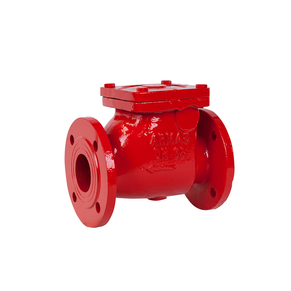Swing Type Check Valve | Check Valves | Fire Protection